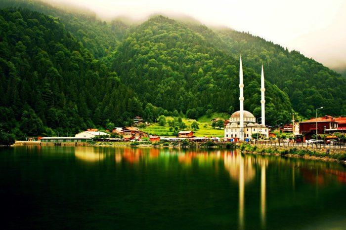 Чудеса Чорноморського узбережжя