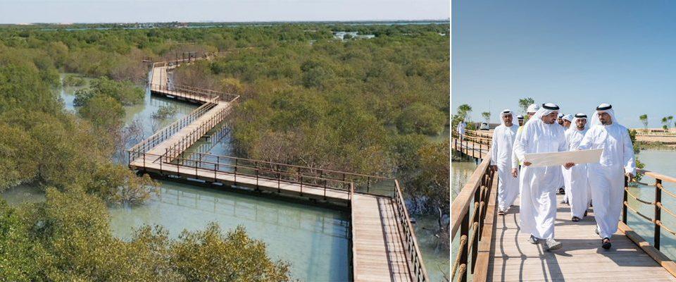 Нова атракція для туристів.  Шлях до природи